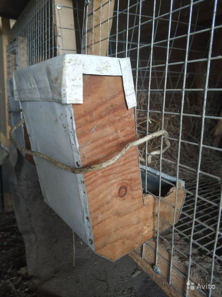 Клетки для кроликов в Иркутске - фотография № 3