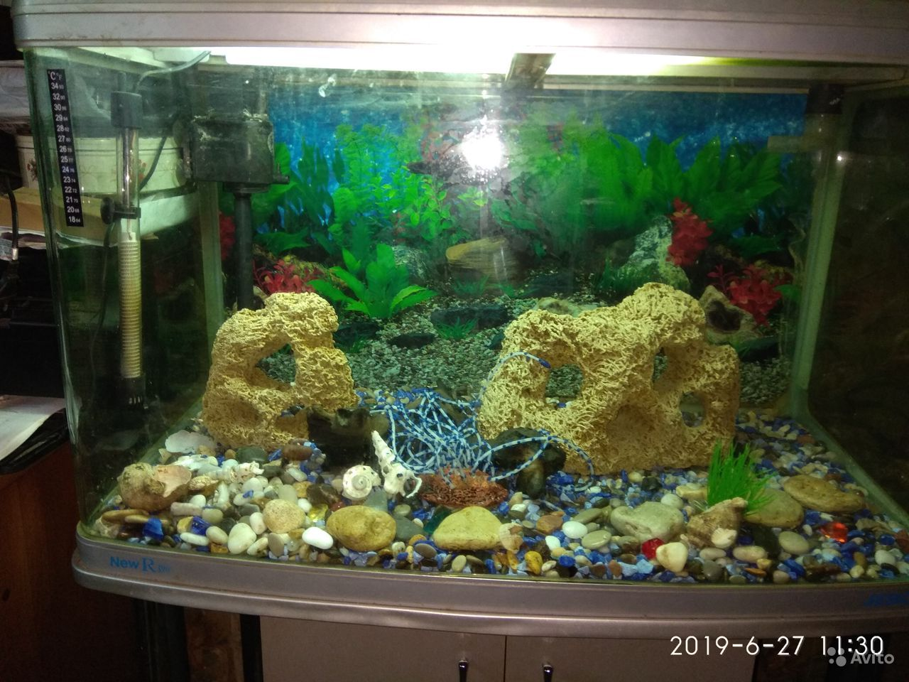 Продается аквариум купить на Зозу.ру - фотография № 5