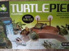 Мостик для черепах