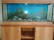 Продам аквариумный комплекс б.у