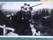 "Открытка фото ""Четыре танкиста и собака"""